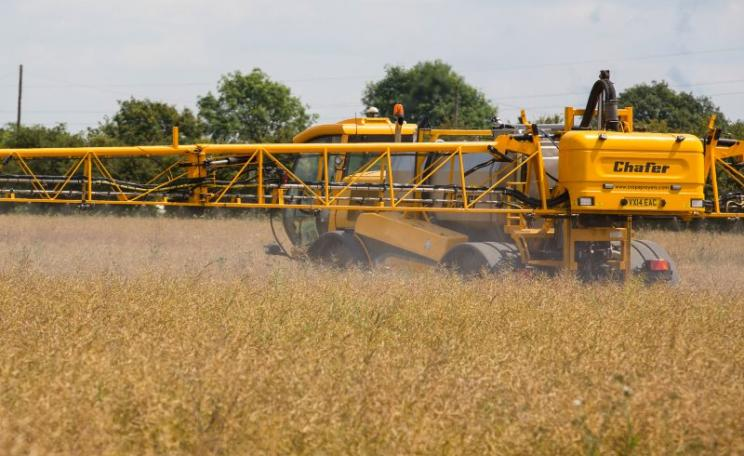 What the European Parliament wanted to ban: glyphosate being applied to oilseed rape as a pre-harvest dessicant. Photo: Chafer Machinery via Flickr (CC BY).