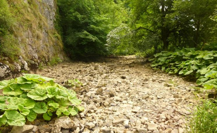 Temporary streams are set to become an increasingly common landscape feature in the UK. The River Manifold (Staffordshire, UK) already experiences annual drying due to features of the underlying bedrock. Photo: Tory Milner.