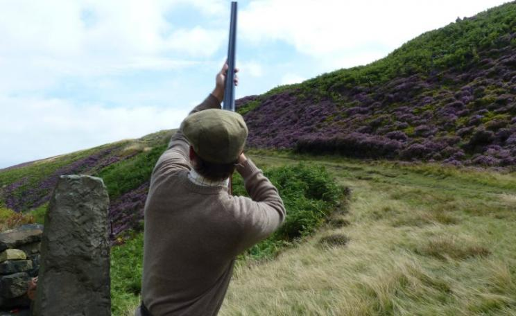 Shooting grouse in Holmfirth, West Yorkshire. Photo: Richard Woffenden via Flickr (CC BY).