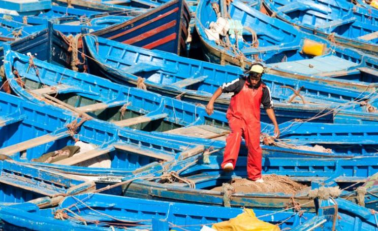 A fisherman walks among the boats in the harbor in the fishing village of Essaouira on Morocco's Atlantic Ocean coast. Photo: Mark Fischer via Flickr (CC BY-SA).