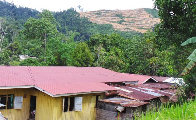 Bigor longhouse with land cleared for oil palm in the background. Photo: Sophie Chao.