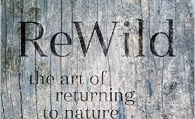 Rewild: The art of returning to nature is now available in hardback.