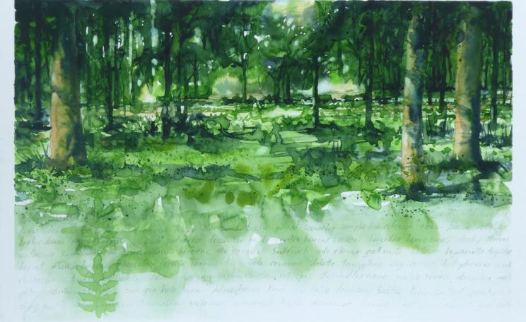 A watercolour of Ashmore Woods from the upcoming AshScape Project. (c) Gary Cook