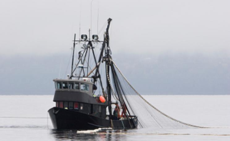 A fishing trawler with nets