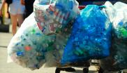 Plastic bottles collected for recycling