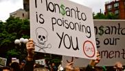 Placard that reads: 'Monsanto is poisoning you'