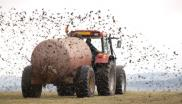 muck spreading