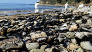 The recent 100,000 gallon oil spill in Santa Barbara shows that accidents are always waiting to happen - and all the more so in a hazardous environment like the Arctic. But Shell says it's fine to drill for oil there - while refusing to release its 'indep