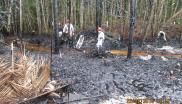 The land contaminated by the oil spill in Mayoriaga. Photo: Forest Peoples Programme