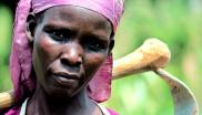 Nigerian farmers like her see no benefit from GM crops, only pain and poverty. Photo: Conflict & Development at Texas A&M via Flickr (CC BY-NC-ND)