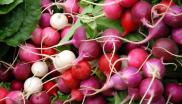 Radical roots ... radishes in a Boston farmers' market. Photo: WBUR Boston's NPR News Station via Flickr (CC BY-NC-ND).