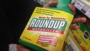 "Activists have relabelled bottles of Monsanto's Roundup weedkiller in garden centres and DIY shops across the UK. Roundup contains glyphosate, a chemical that the WHO has shown to be ""probably carcinogenic"". (c) Global Justice Now"