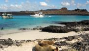 Tourist boats and seals on a Galapagos beach