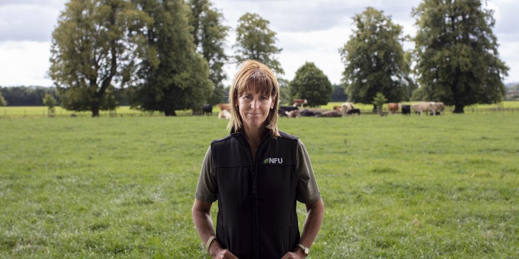 Farmers' union Brexit food warning